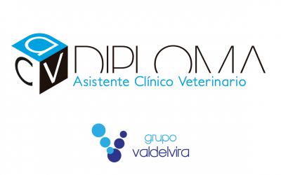 Conoce el material de marketing para los Cursos de Asistente Clínico Veterinario certificados por AEVE