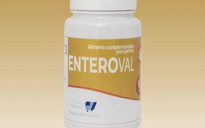Conoce más sobre EnteroVal, alimento complementario para perros de Comercial Valservet