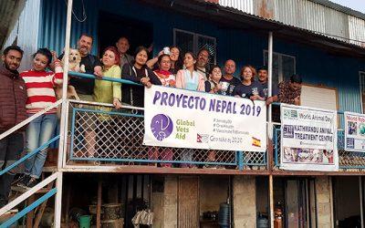 Proyecto Nepal 2019 de Global Vets Aid, solidaridad veterinaria para el bienestar animal y social
