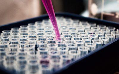 [CONVENIOS EXCLUSIVOS] Micros Veterinaria, laboratorio de diagnóstico anatomopatológico