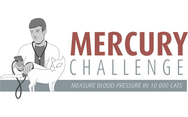 Participa en el Mercury Challenge y gana una beca de formación para veterinarios