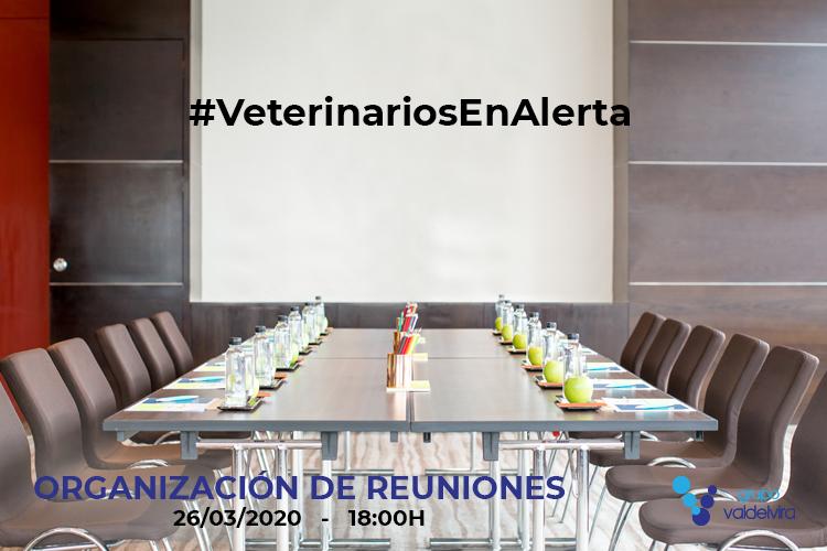 [CHARLA ONLINE] Organización de Reuniones con el Personal del Centro Veterinario – #VeterinariosEnAlerta