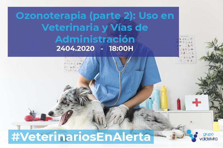 [CHARLA ONLINE] Ozonoterapia (parte 2): Uso en Veterinaria y Vías de Administración – #VeterinariosEnAlerta