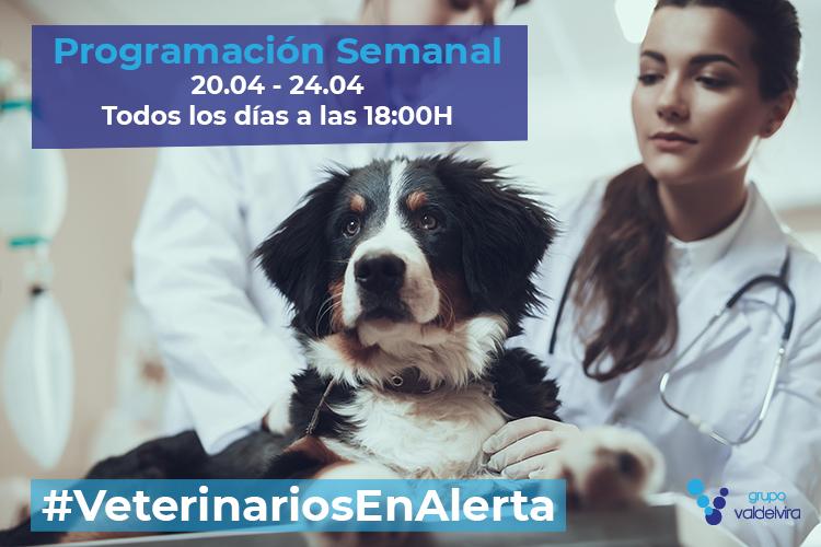 Programación de #VeterinariosEnAlerta Semana 20/04 – 24/04