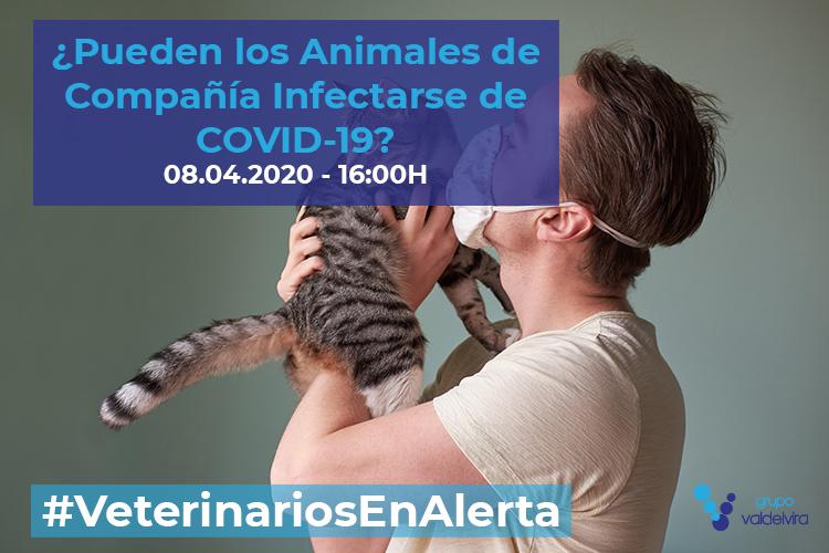 [CHARLA ONLINE] ¿Pueden los animales de compañía infectarse de COVID-19? – #VeterinariosEnAlerta