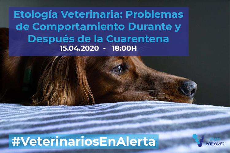 [CHARLA ONLINE] Etología Veterinaria: Problemas de Comportamiento Durante y Después de la Cuarentena – #VeterinariosEnAlerta