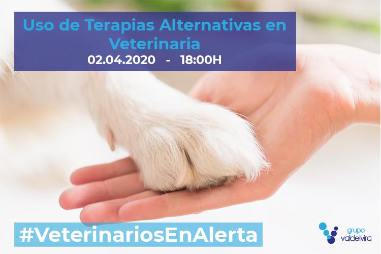 [CHARLA ONLINE] Uso de Terapias Alternativas en Veterinaria – #VeterinariosEnAlerta
