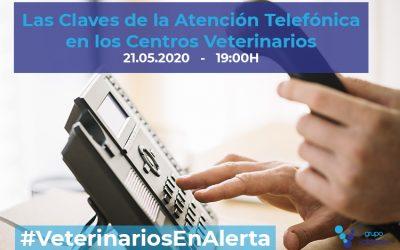 [CHARLA ONLINE] Las Claves de la Atención Telefónica en los Centros Veterinarios – #VeterinariosEnAlerta