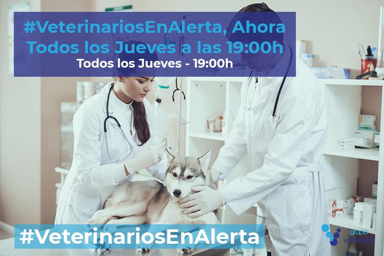 #VeterinariosEnAlerta continúa: ahora todos los jueves a las 19:00h