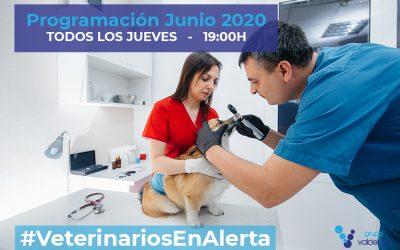 Programación de #VeterinariosEnAlerta – Junio 2020