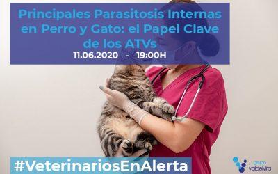 [CHARLA ONLINE] Principales Parasitosis Internas en Perro y Gato: el Papel Clave de los ATVs – #VeterinariosEnAlerta