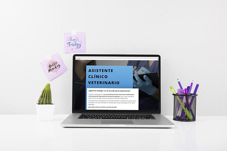 Descubre la web del Curso de Asistente Clínico Veterinario Certificado por AEVE