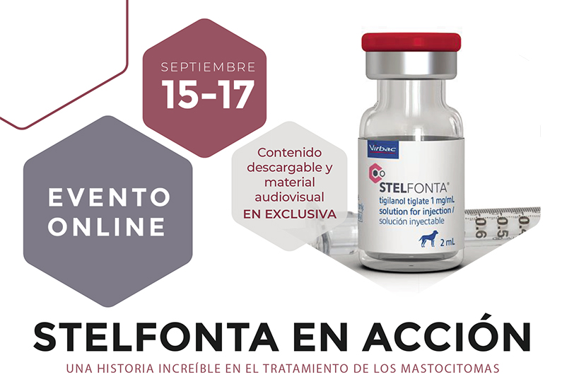 [Evento Online] STELFONTA en acción: una historia increíble en el tratamiento de los mastocitomas