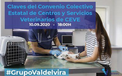 [Reunión Online] Claves del Convenio Colectivo Estatal de Centros y Servicios Veterinarios de CEVE