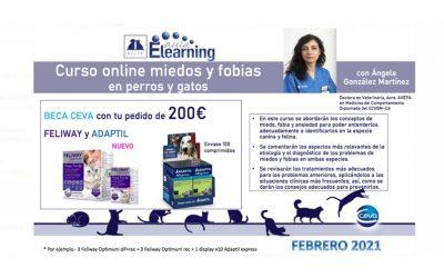 [Curso Online] Miedos y Fobias en Perros y Gatos, organizado por AVEPA y CEVA