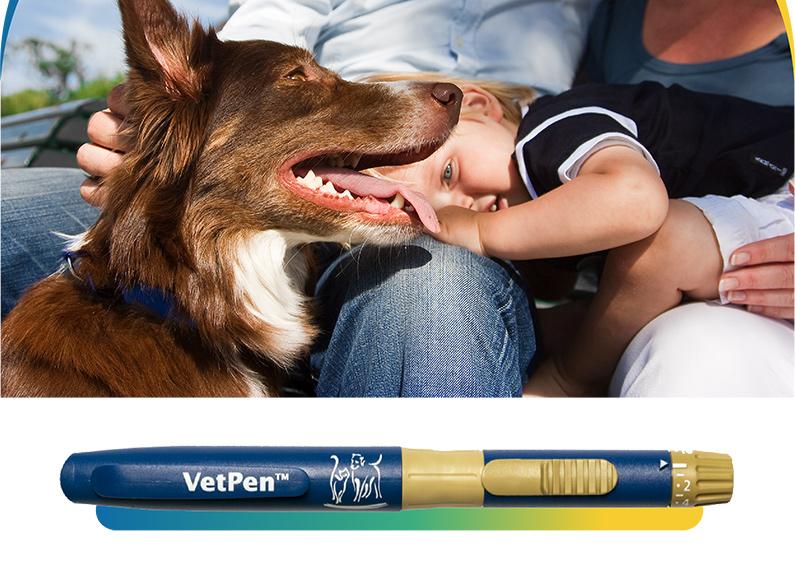 Caninsulin VetPen, un nuevo aliado en la lucha contra la diabetes canina