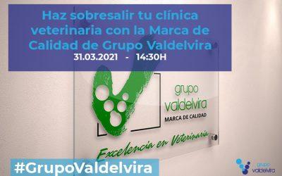 [Charla IMPULSO ACV] Marca de Calidad de Grupo Valdelvira: cómo puede ayudarte a hacer crecer tu clínica