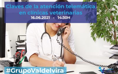 [CHARLA IMPULSO ACV] Claves de la atención telemática en clínicas veterinarias