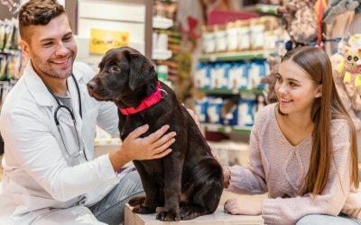 Autorización para la publicación de imágenes de mascotas del propietario y/o menores que asisten a la clínica veterinaria